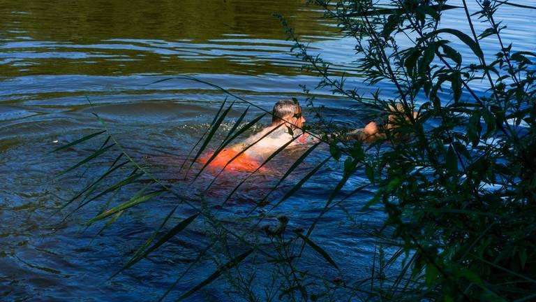 Een omstander redde de hond uit het water (foto: Dave Hendriks/SQ Vision).