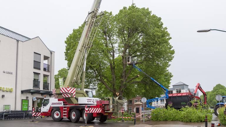 De twee bedrijven in de weer (foto: Albert Hendriks/Overloon Nieuws).