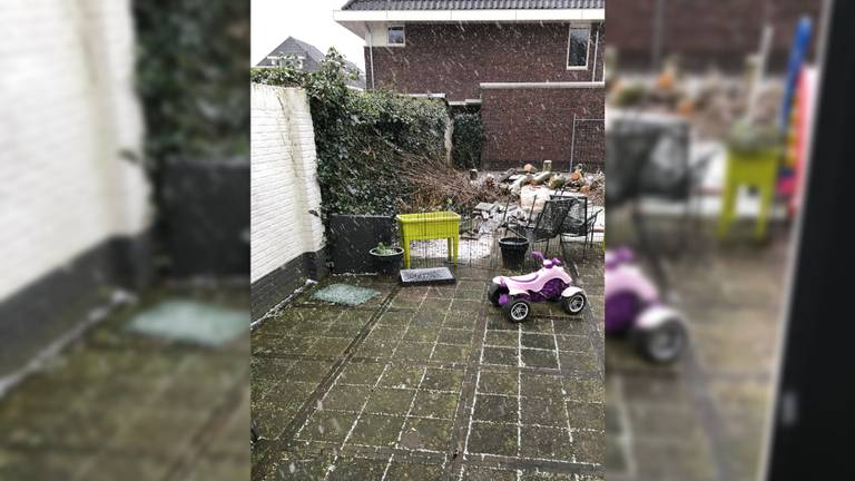 Sneeuw in Ulvenhout.