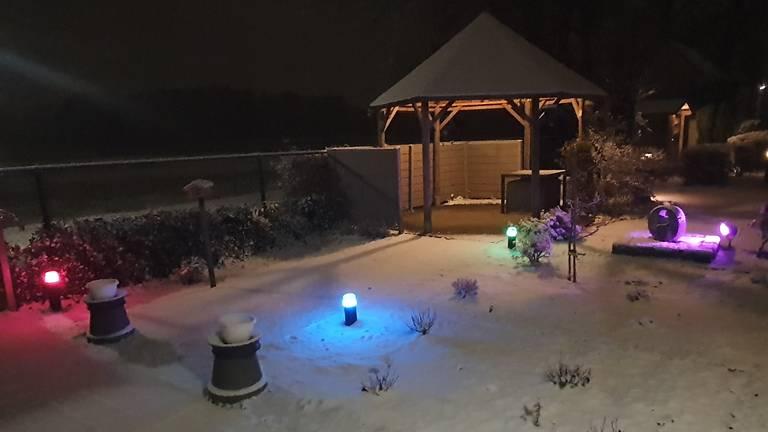 Winterwonderland in een tuin in Nuenen (foto: Loek de Folter).