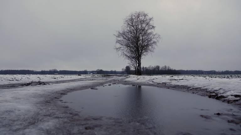 Een wit zuidoosten van Brabant (foto: Ben Saanen).