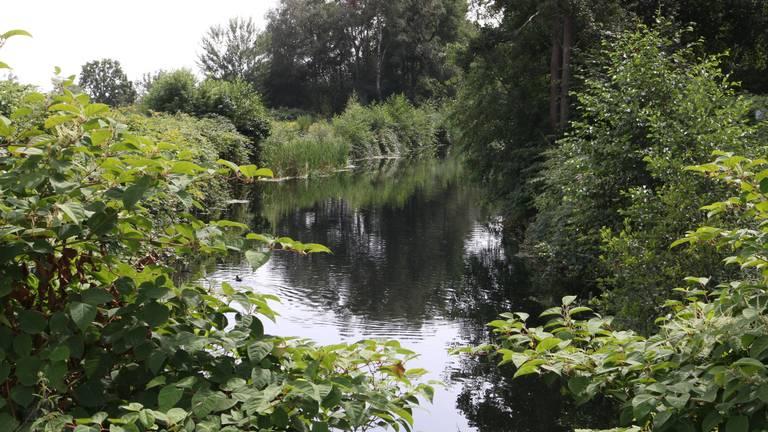 Het water van het Deurnes kanaal bevat te veel voedingsstoffen, in het plan wordt dat water dan ook uit De Peel gehouden.