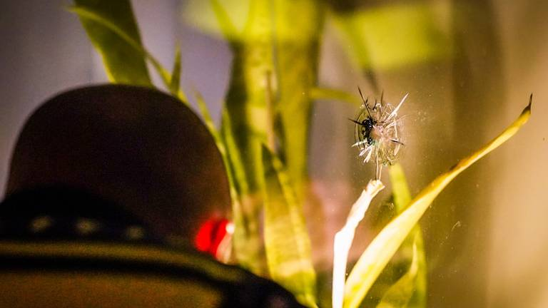 De beschieting in de Jan Heynslaan in Eindhoven vond rond halftwaalf donderdagavond plaats (foto: Sem van Rijssel/SQ Vision).