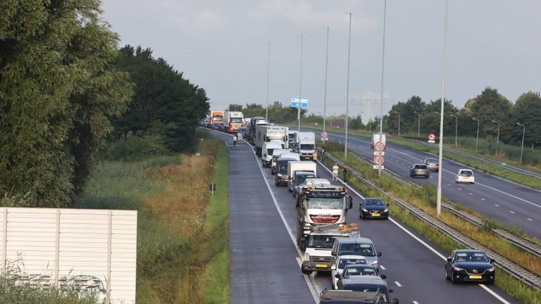 Vanwege de afsluiting van de A59 ontstond een flinke file (foto: Bart Meesters).