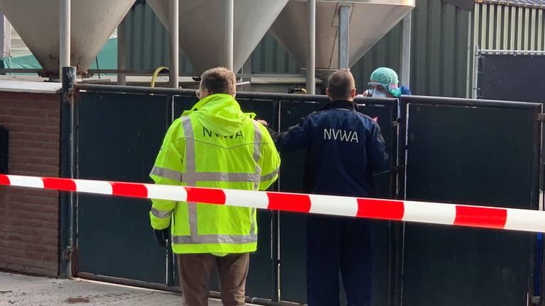 De NVWA bij een besmette nertsenfokkerij (foto: Eva de Schipper).