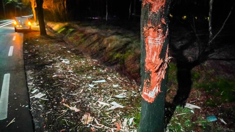 Ook de boom raakte bij de aanrijding in Nuenen flink beschadigd (foto: Sem van Rijssel/SQ Vision).