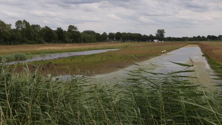 Naast de waterhouderij ligt een waterberging, een gebied waar bij plotselinge regenbuien water van De Bemmer naar toe kan stromen.