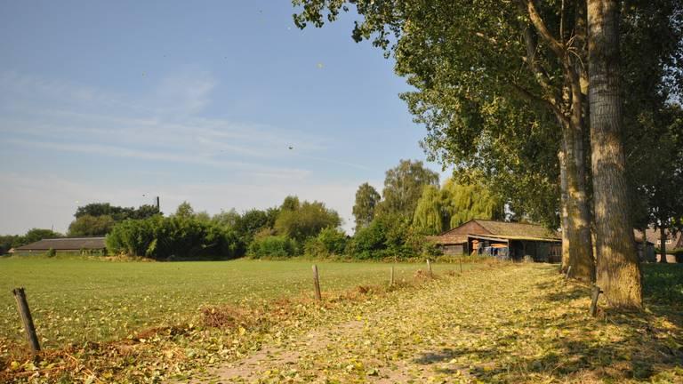 Het was de warmste 10 augustus in Brabant sinds het begin van de metingen (foto: Ben Saanen).