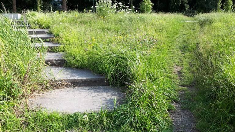 Olifantenpaadje in het Dommelpark in Sint-Oedenrode (foto: Jan Verhagen)